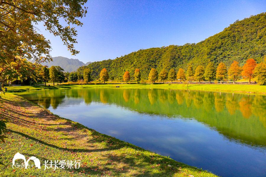 【宜蘭景點】蜊埤湖|美麗的人間仙境秋冬最美的落羽松