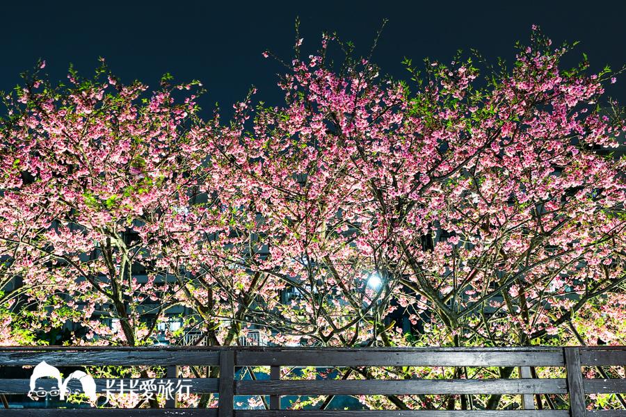 【台北景點】內湖樂活公園夜櫻季|城市裡也能賞櫻浪漫櫻花步道就在捷運東湖站 - kafkalin.com