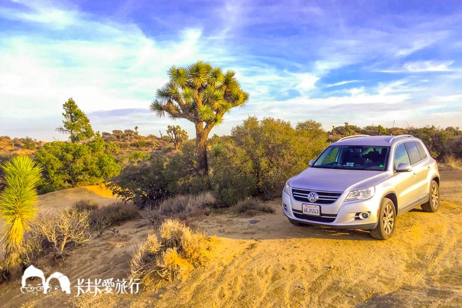 【美國生活】美國加州考駕照全攻略|DMV準備資料、路考方法與考古題