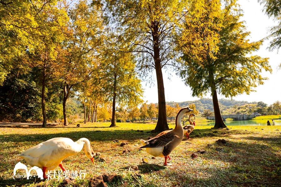 2021宜蘭景點懶人包|宜蘭必玩景點一日遊二日行程秘境觀光工廠博物館親子 - kafkalin.com