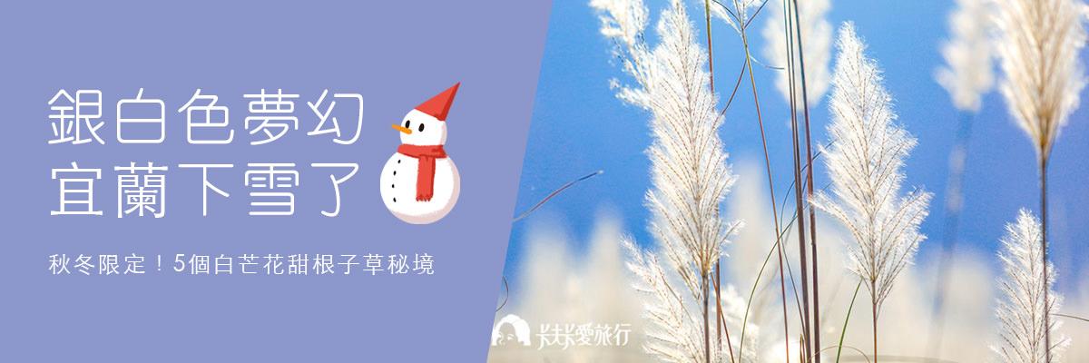 銀白色夢幻下雪了!5個白芒花、甜根子草秘境公開秋冬限定菅芒花海