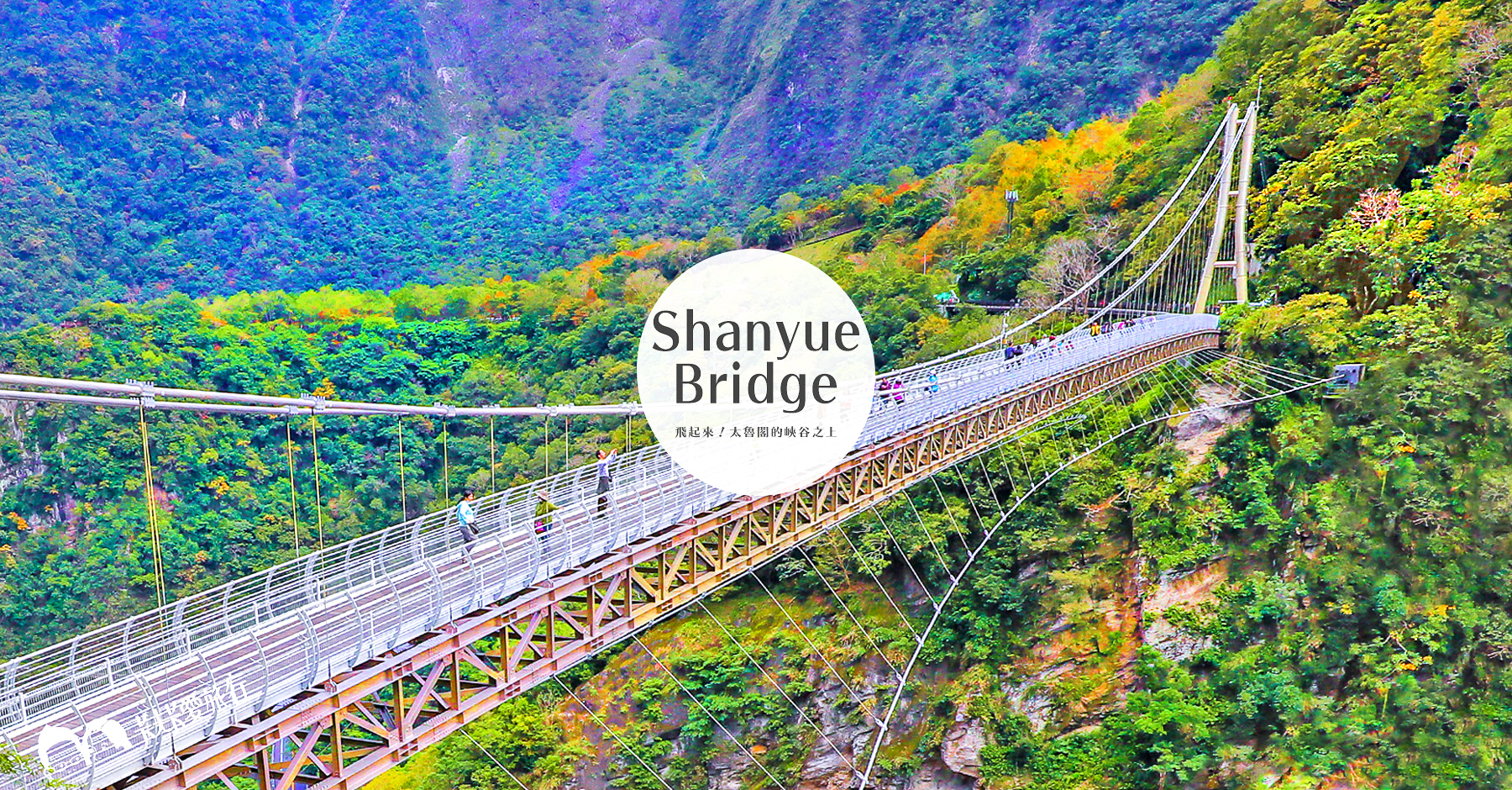 太魯閣山月吊橋!彷彿飛翔於壯闊峽谷之上|免門票申請預約攻略預約不到怎麼辦